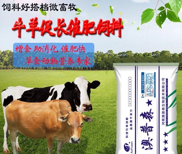 3%育肥期肉牛预混料