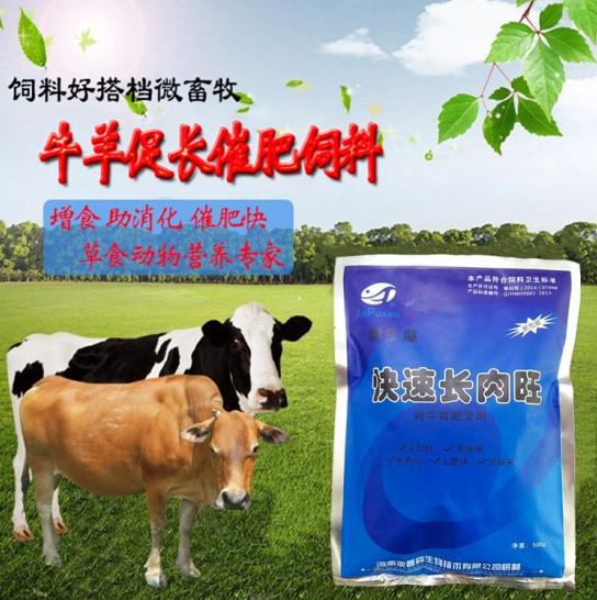 肉牛快速育肥首选---激生肽快速长肉旺